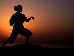 mallorca-karate-sonnenu-2007-107.jpg